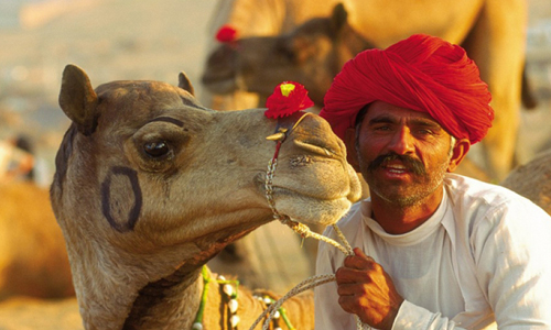 Rajasthan-Tour-Package